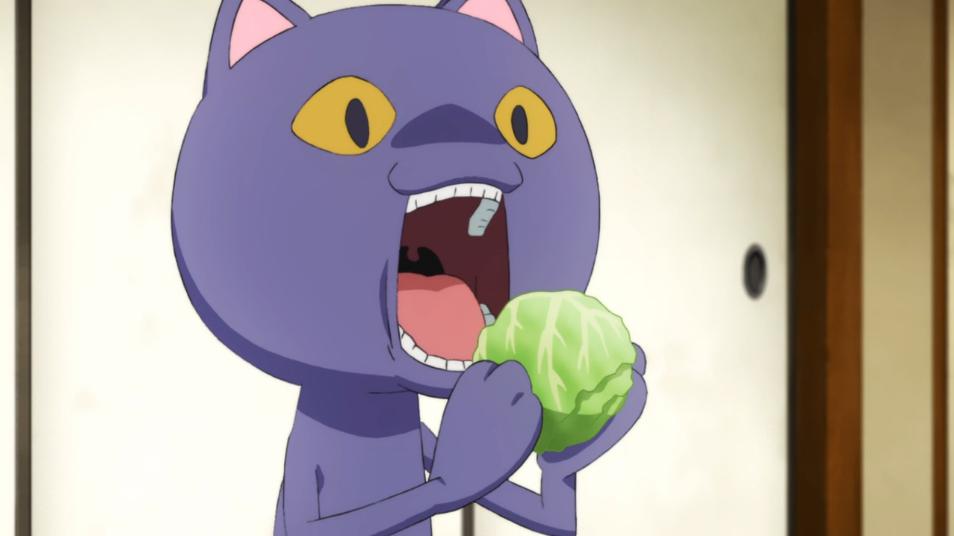 Cat eats lettuce